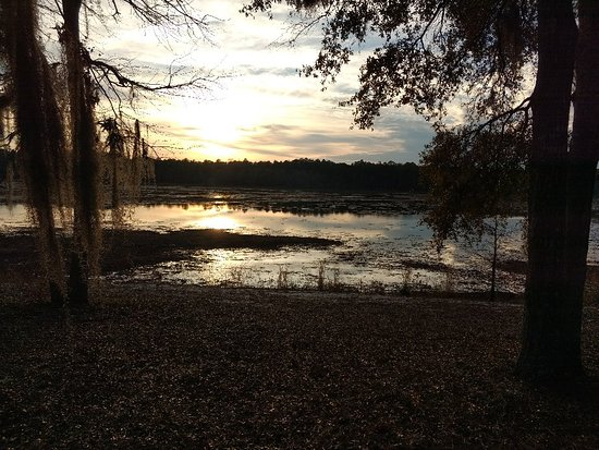 Little Ocmulgee State Park and Lodge: IMG_20171217_165536154_large.jpg