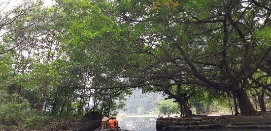 Tam Coc Tours - Ninh Binh Day Trips Photo