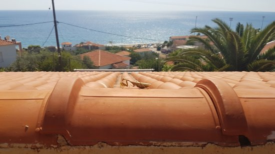 Agios Isidoros, اليونان: Balkon manzarası ve peygamber devesi