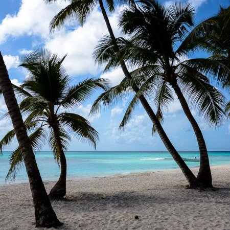 Bayahíbe, República Dominicana: Pro excursions Bayahibe