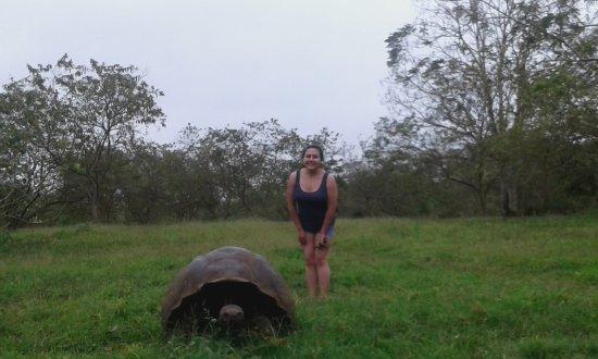 Reserva El Chato: Junto a una tortuga gigante