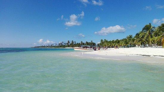 Bayahíbe, República Dominicana: IMG_20171214_132039_large.jpg