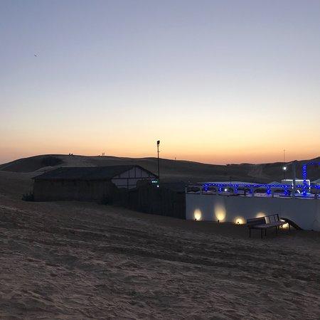 Phoenix Desert Safari- Day Tours