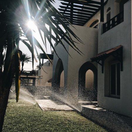 Royal Grand Sharm Hotel : photo1.jpg
