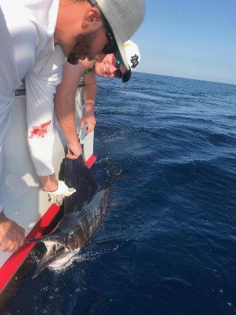 Jupiter, Flórida: Reel Candy Fishing Charter 12/2017