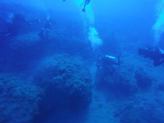 Jupiter, Flórida: Diving with Santa