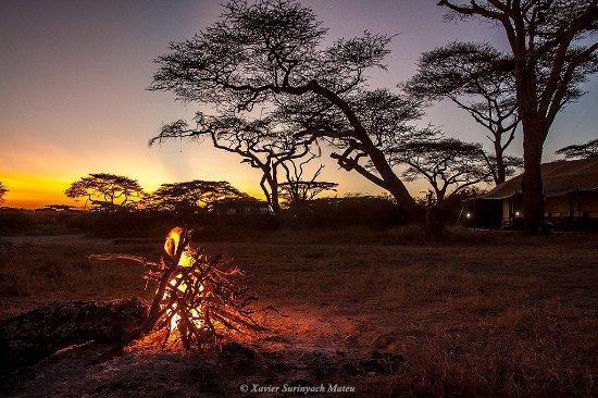 Serengeti Savannah Camps: Bonfire at sunset to enjoy a cold beer.