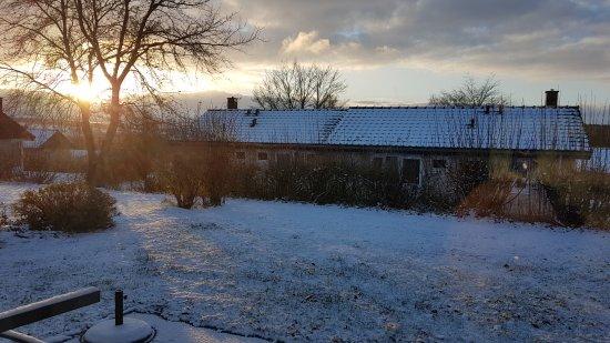 Leiwen, Tyskland: Cottage garden