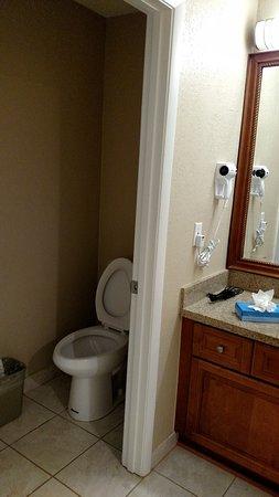 Room 2 Master Bath Toilet Closet Had A Door But Bathroom Did Not