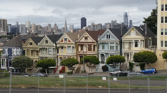 Painted Ladies San Francisco All You Need To Know