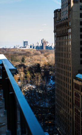 Terrace view of central park