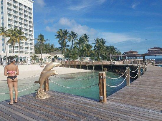Bahamas All Inclusive >> Warwick Paradise Island Bahamas All Inclusive Picture Of Warwick