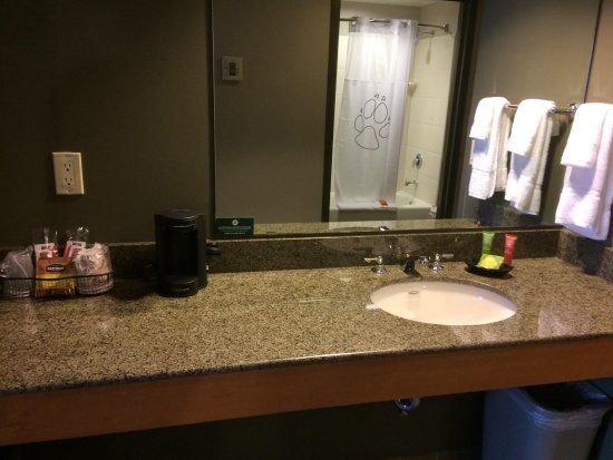 Great Wolf Lodge: Vanity Area
