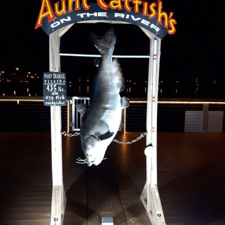 Aunt Catfish's On The River: photo0.jpg