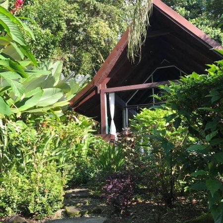 Oxygen Jungle Villas: photo0.jpg
