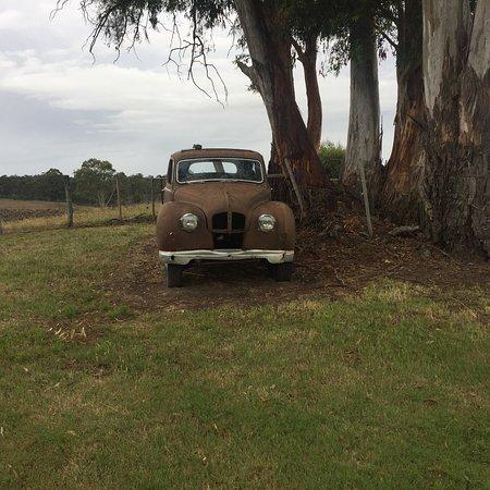 New Norfolk, أستراليا: Quirky Daylight