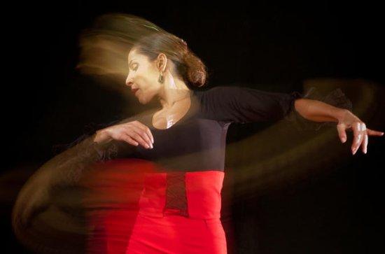 Malaga Flamenco Private Workshop