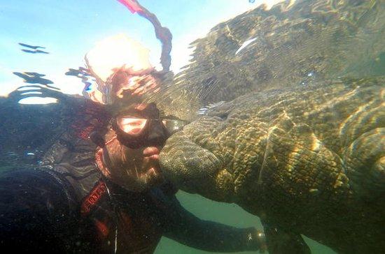 Nadada Privada com Aventura Peixe-Boi