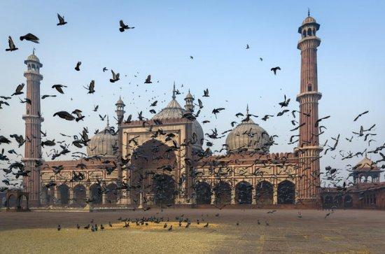 Full-day Tour of Delhi