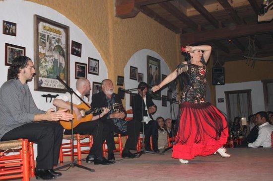 Seville Flamenco show and tapas tour