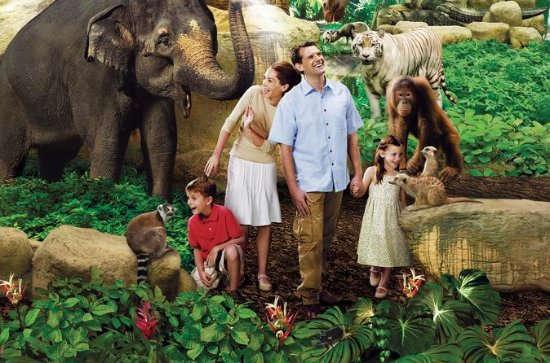Singapore Zoo Admission Ticket