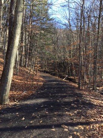 Tully, NY: Trail to Tinker Falls