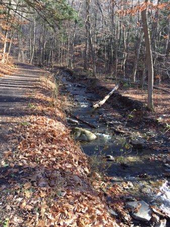 Tully, NY: Along the trail