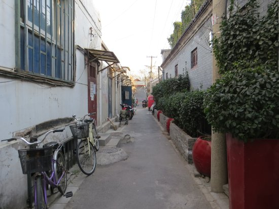 Kellys Courtyard: Hutong (alley) as seen from hotel front door