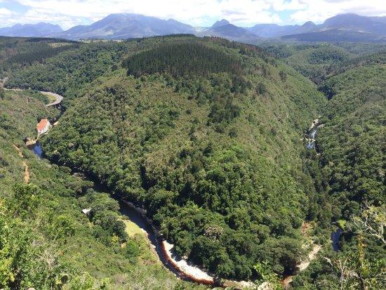 Wilderness, جنوب أفريقيا: photo1.jpg