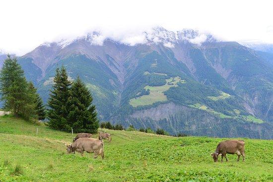 Tea Room Zurschmitten: View from Tea Room (2)
