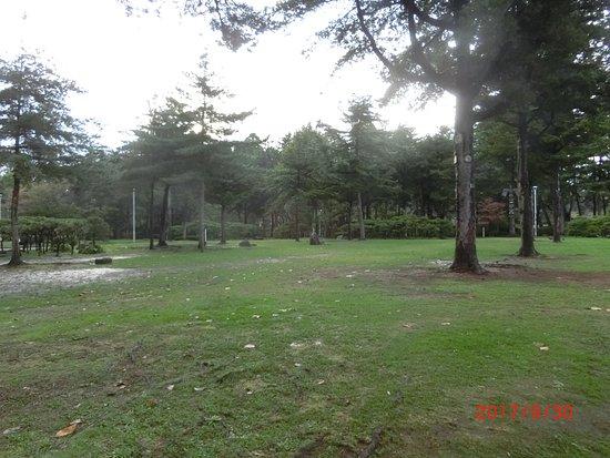 Iwate Park (Koen): 盛岡城跡
