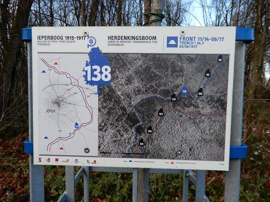 Hooge Crater museum: Britse frontlijn-herdenkingsboom