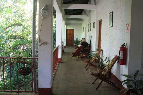 La Mariposa Spanish School and Eco Hotel: This is the upper floor where the bedroom are and the balcony overlooking the jungle garden.