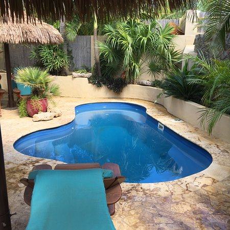 Bamboo Bali Bonaire - Boutique Resort: Zwembad