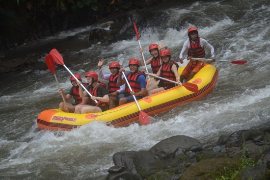 Best Ubud Activity