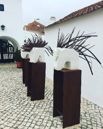 Quinta do Rol Photo
