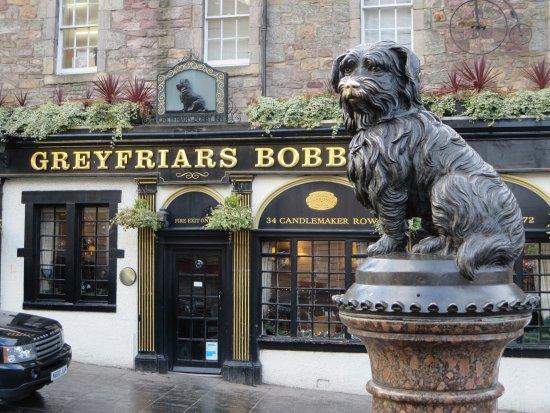 Greyfriars Bobby's Bar: La statua di Bobby Greyfriars di fronte al Pub