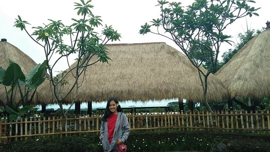 Img20171120122756 Large Jpg Picture Of Bali Ndeso Resto