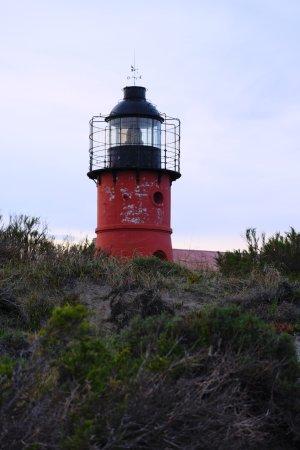 Punta Delgada ภาพถ่าย