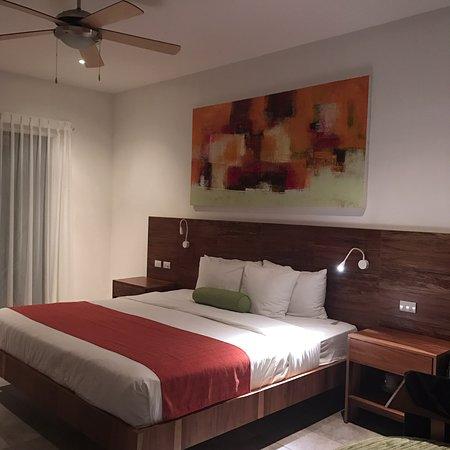 Hotel Villas Playa Samara: Evenings were very romantic , wild horses on the beach,the moon lighting up the resort and a bea
