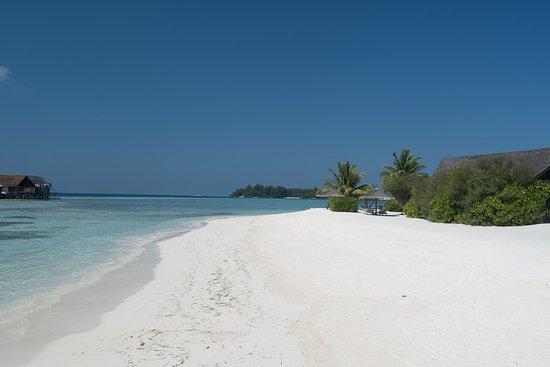 Cocoa Island by COMO: The beach