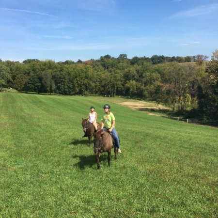 Lititz, Pennsylvanie : Taking a short cut back from the woods trails