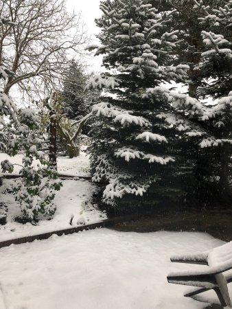 Aerzen, Germany: Herrlicher Anblick, frischer Schnee