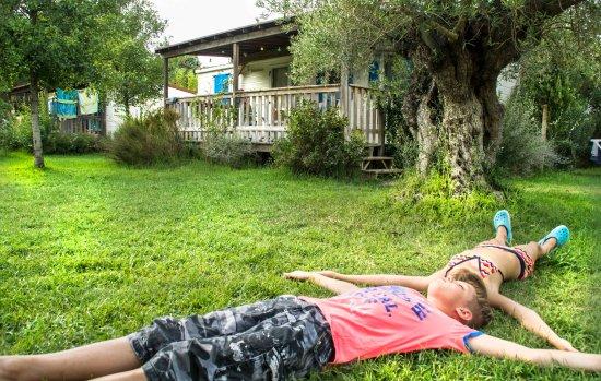 Bibbona, Italie : Giglio Paradise