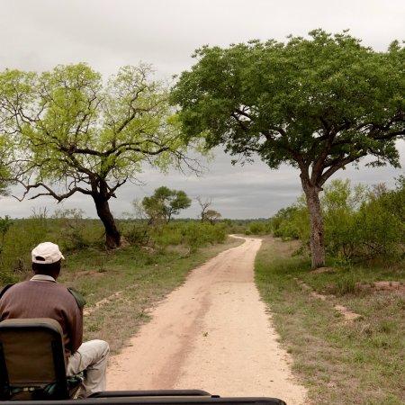 Pungwe Safari Camp: photo3.jpg