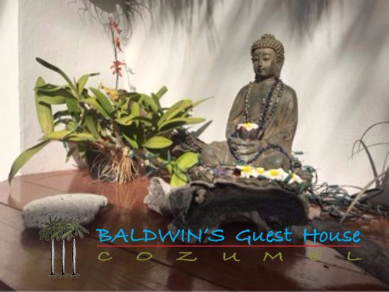 Baldwin's Guest House Cozumel: relax in our garden