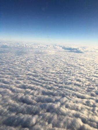 TAP Air Portugal: Nuvens sobre a Alemanha