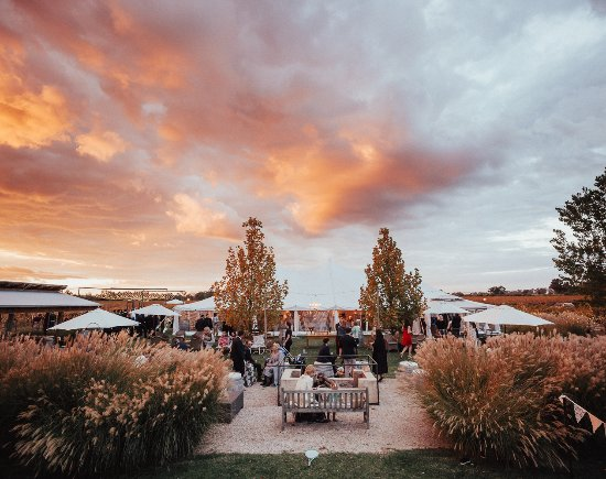 Mudgee's stunning sunsets add to the magic of a wedding at The Vinegrove
