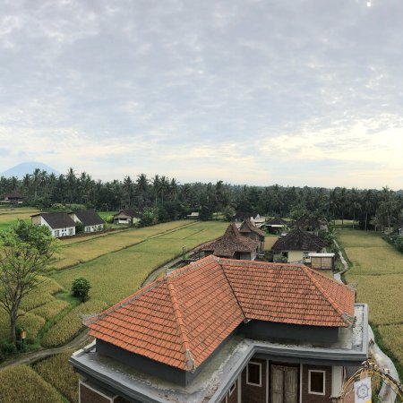 Nirwa Ubud Homestay: photo0.jpg