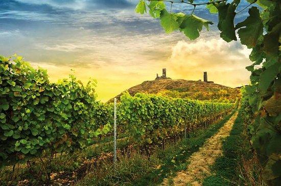 Prague Bohemian Wine Tasting and...